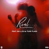 Real (Remix) by DJ Michel