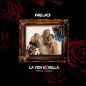 La Vida Es Bella by Ñejo