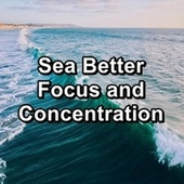 Sea Better Focus and Concentration von Massage Music