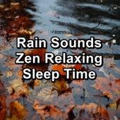 Rain Sounds Zen Relaxing Sleep Time von Sleep Music (1)