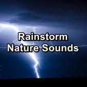 Rainstorm Nature Sounds von Nature Sounds (1)