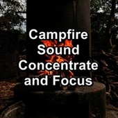 Campfire Sound Concentrate and Focus by Yoga Music