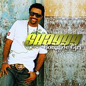 Bonafide Girl by Shaggy
