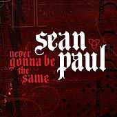 Never Gonna Be The Same by Sean Paul