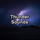 Thunder Sounds de Sounds Of Nature