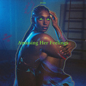 Amusing Her Feelings de dvsn