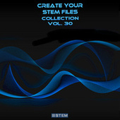 Create Your Stem Files Collection, Vol. 30 (Instrumental Versions And Tracks With Separate Sounds) von Express Groove