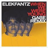 When We Were Young (Gabe Remix) de Elekfantz