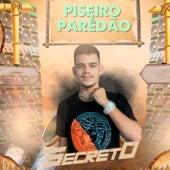 Piseiro e Paredão by MC Secreto