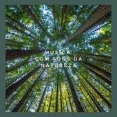 Musica Com Sons da Natureza von Meditação e Espiritualidade Musica Academia