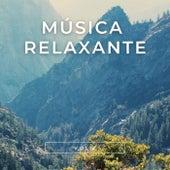 Música Relaxante, Vol. 2 von Notas de Relaxamento