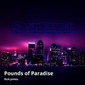 Pounds of Paradise von Rick James
