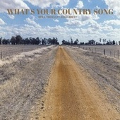 What's Your Country Song (feat. Jonas Rhett) de Brice Thomas