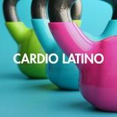 Cardio Latino de Various Artists