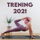 Treningsmusikk 2021 by Various Artists