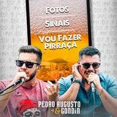 Fotos / Sinais / Vou Fazer Pirraça (Cover) de Pedro Augusto
