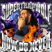 Now Or Never by SuperTrapWolf