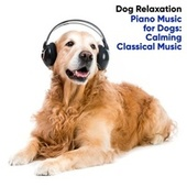 Piano Music for Dogs: Calming Classical Music de Dog Relaxation