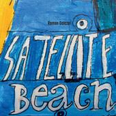Satellite Beach by Roman Dolezal