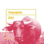 Vaquejada 2021 de Various Artists