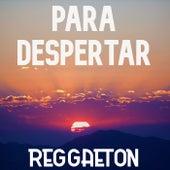Para Despertar: Reggaeton de Various Artists