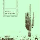Músicas de Forró 2021 de Various Artists