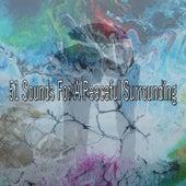 51 Sounds for a Peaceful Surrounding von Lullabies for Deep Meditation
