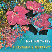 Everything Is Temporary de Nathan Yates
