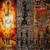 Destroy Erase Improve by Meshuggah