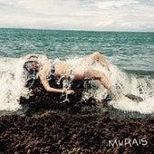 Murais by Murais