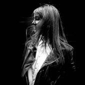 Le Vent Nous Portera (David Hasert Remix) by Sophie Hunger