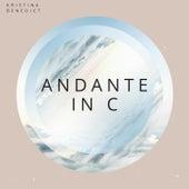 Andante in C Major, K. 315 by Kristina Benedict