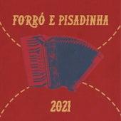 Forró e Pisadinha 2021 de Various Artists