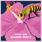 Tierra Firme by Benjamín Amadeo