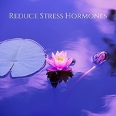 Reduce Stress Hormones: Stress Release Meditation Music by Various Artists