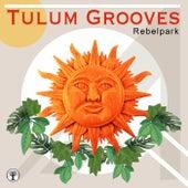 Tulum Grooves de Various Artists