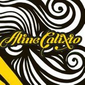 De Partir Chegar von Aline Calixto