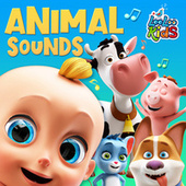 Animal Sounds by LooLoo Kids