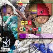 Hue: An Audio Last Will & Testament von Mickey Factz