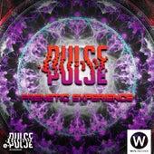 Pulse Frenetic Experience by Vários Artistas