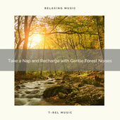 2021 New: Take a Nap and Recharge with Gentle Forest Noises by Sleep Sound Library