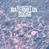 Watermelon Sugar by Britt Lari