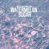 Watermelon Sugar de Britt Lari