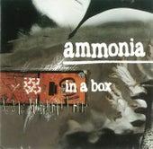 In A Box by Ammonia