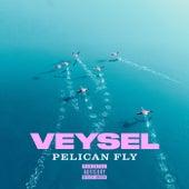 PELICAN FLY de Veysel