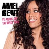 Tu veux ou tu veux pas by Amel Bent