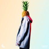 Photograph de PLÜM