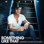 Something Like That (Stripped Down Acoustic) von Tim McGraw