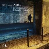 Haydn 2032, Vol. 9: L'Addio de Giovanni Antonini