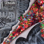 La Batalla de Fabiana Cantilo